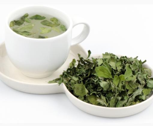 Moringa Herb