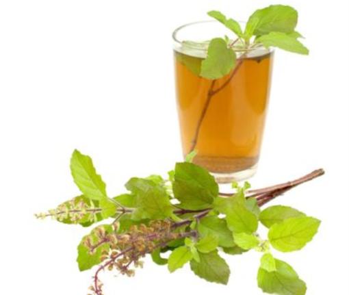Organic Indian Tulsi Tea